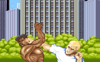 STREET FIGHTER II(AMIGA版) OP