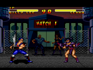 DOUBLE DRAGON � battle